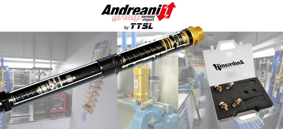 Andreani-Group import by TTSL